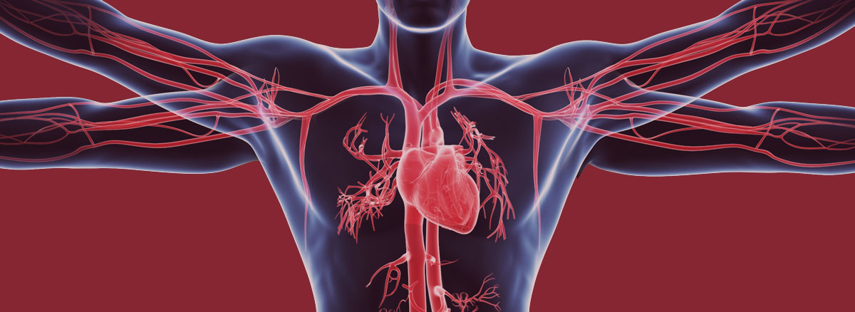 Vascular Institute of Atlanta Provides World Class Care for Vascular Diseases and Conditions